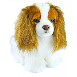 Obrázek plyšový pes King Charles Španěl, 25 cm
