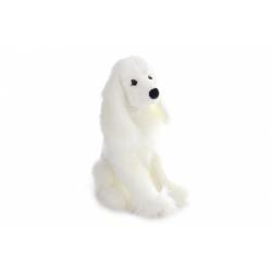 Obrázek Plyš Pes kokršpaněl bílý
