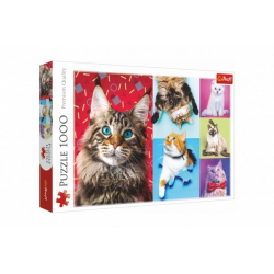 Obrázek Puzzle Šťastné kočky 1000 dílků 68,3x48cm v krabici 40x27x6cm