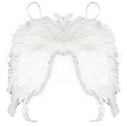 Obrázek krídla Anjelské, perie
