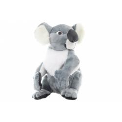 Obrázek Plyš Koala velká