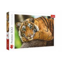 Obrázek Puzzle Portrét tygra 500 dílků 48x34cm v krabici 40x27x4,5cm