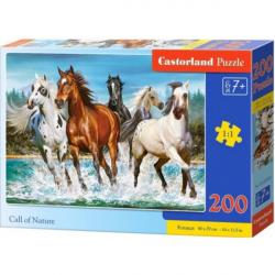 Obrázek Puzzle Castorland 200 dílků premium - Běžící koně (volání divočiny)