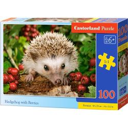 Obrázek Puzzle Castorland 100 dílků premium - Ježek s ovocem