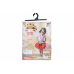 Obrázek Šaty na karneval - jahoda, 80 - 92 cm