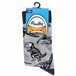 Obrázek ALBI Ponožky - Dinosauři