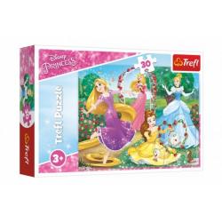 Obrázek Puzzle Princezny Disney 27x20cm 30 dílků v krabičce 21x14x4cm