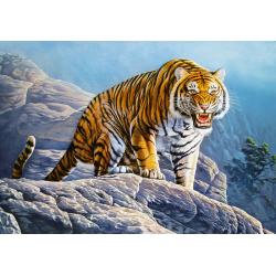 Obrázek Puzzle Castorland 500 dílků - Tygr na skále