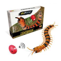 Obrázek WILDROID - Stonožka R / C krabica