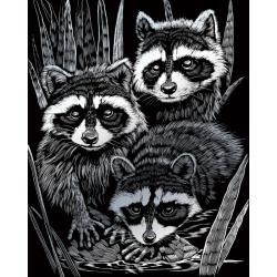 Obrázek Škrabací obrázek stříbrný - Mývalové