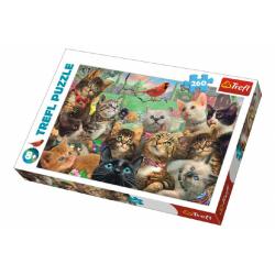 Obrázek Puzzle Kočky 260 dílků 60x40cm