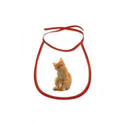 Obrázek Dětský bryndák Malovaná zvířátka - Kočička - červený