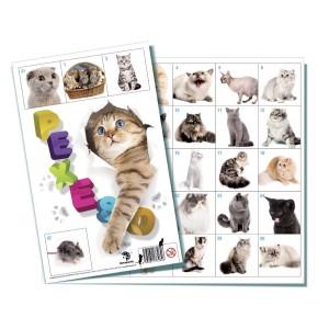 Pexeso 32 Kočky - Cena : 18,- Kč s dph