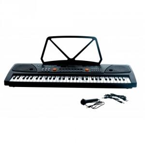 Teddies Piánko velké plast 61 kláves s mikrofonem - Cena : 799,- Kč s dph