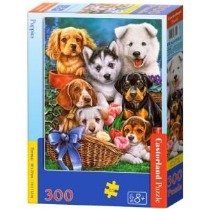 Puzzle 300 dílků - Štěňata - Cena : 126,- Kč s dph