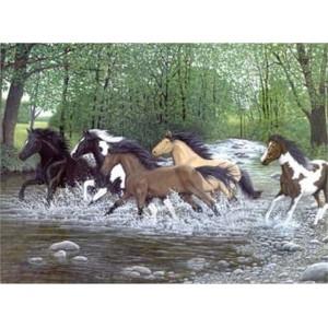 Maľovanie podľa číselného Bežiaci kone vodou - Cena : 272,- Kč s dph